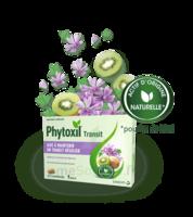 Phytoxil Transit Comprimés B/20 à LE BARP