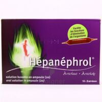 HEPANEPHROL, solution buvable en ampoule à LE BARP