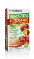 Arkovital Acérola 1000 Comprimés à Croquer B/30 à LE BARP