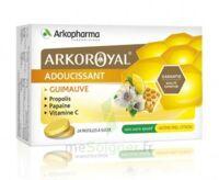 Arkoroyal Propolis Pastilles Adoucissante Gorge Guimauve Miel Citron B/24 à LE BARP
