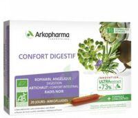 Arkofluide Bio Ultraextract Solution Buvable Confort Digestif 20 Ampoules/10ml à LE BARP