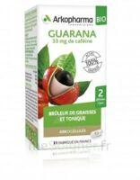 Arkogélules Guarana Bio Gélules Fl/45 à LE BARP