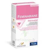 Pileje Feminabiane Périnatal 28 Gélules Blanches Et 28 Gélules Jaunes à LE BARP