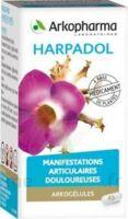 Arkogelules Harpagophyton Gélules Fl/150 à LE BARP