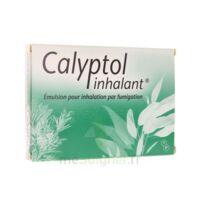 Calyptol Inhalant, émulsion Pour Inhalation Par Fumigation à LE BARP