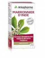 Arkogelules Marronnier D'inde Gélules Fl/45 à LE BARP