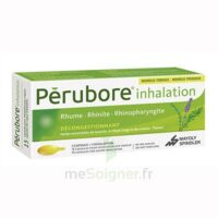 Perubore Caps Inhalation Par Vapeur Inhalation Plq/15 à LE BARP