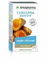 Arkogelules Curcuma Pipérine Gélules Fl/45 à LE BARP