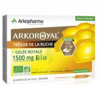 Arkoroyal Gelée royale bio 1500 mg Solution buvable 20 Ampoules/10ml à LE BARP