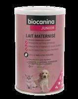 Biocanina Lait Poudre Maternisé B/400g à LE BARP