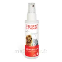 Clément Thékan Caniderma Solution Externe Cicatrisant Spray/125ml à LE BARP
