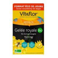 Vitaflor Bio Gelée Royale 1500mg Solution Buvable 30 Ampoules/15ml à LE BARP