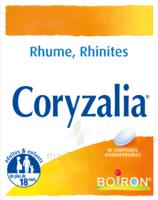 Boiron Coryzalia Comprimés Orodispersibles à LE BARP