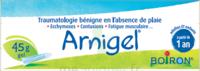 Boiron Arnigel Gel T/45g à LE BARP